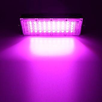 50w أدى النبات تنمو مصباح الضوء