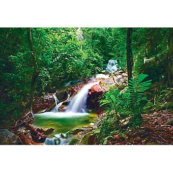 Wall mural wild jungle forest and waterfall (400x260 cm)