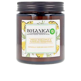Air-wick Botanica Candle Ananas & Tunisian Rosemary 205 Gr Unisex
