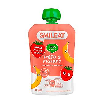 Organic Strawberry and Banana Drinkable Pouch + 4 Months 100 g