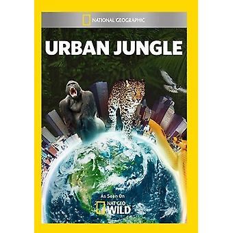 Urban Jungle [DVD] USA import