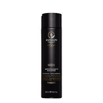 Paul Mitchell Awapuhi Wild Ginger Mirror Smooth Shampoo 250ml Paul Mitchell Awapuhi Wild Ginger Mirror Smooth Shampoo 250ml