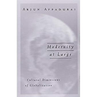 Modernity at Large: Cultural Dimensions in Globalization (Public Worlds)