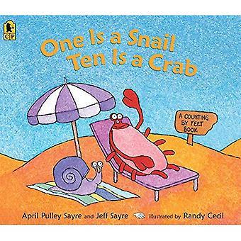 En är en snigel, tio är en krabba: en inventering av fötter bok