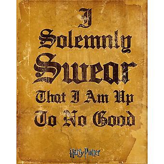 Harry Potter I Solomnly Swear Mini Poster 40x50cm