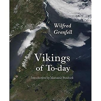Vikings of To-day (Adventures in New Lands)