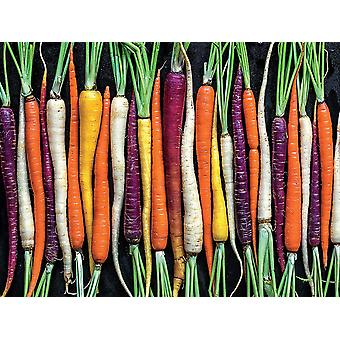 Puzzle - Ceaco - Ugly Produce - Rainbow Carrot Path 300pcs New 2259-2