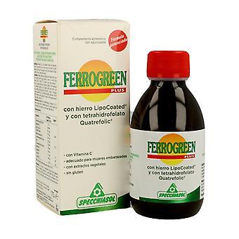 Ferrogreen Plus IJzer 170 ml