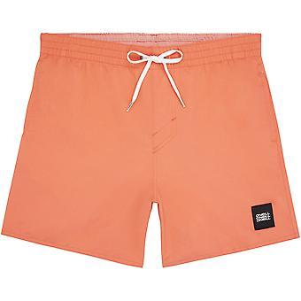 O'Neill Quick Dry Volley Shorts ~ Vert orange