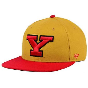Youngstown State Penguins NCAA 47 Marque -Quot;Sure Shot-quot; Flat Bill Snapback Hat