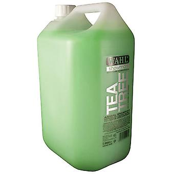 Wahl Concentrated Tea Tree Shampoo - 5ltr