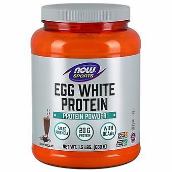 """עכשיו ממזון חלבון ביצה, שוקולד עשיר 1.5 ק""""ג"""