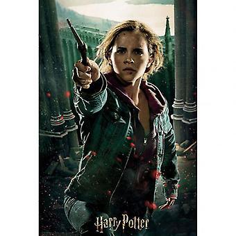 Harry Potter 3D Image Puzzle 300pc Hermione