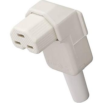 Kalthoff 1562... Hot Wire connector socket, rechte hoek totaal aantal pinnen: 2 + PE 16 A Wit 1 PC (s)