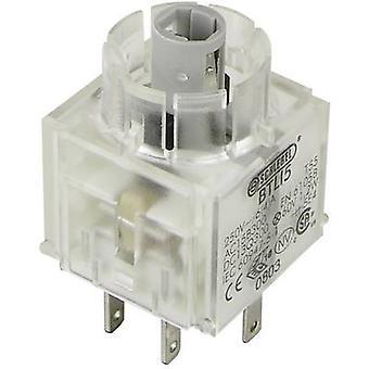 Schlegel BTLI5 Contact + bulb holder 2 makers momentary 250 V 1 pc(s)