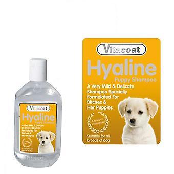 VITACOAT karahvi Hyaline Shampoo keskittyä 5L (koirien trimmaus & hyvinvointia, shampoot)