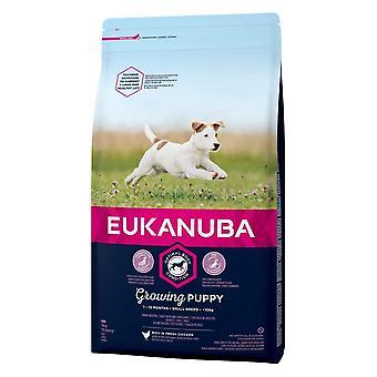 Eukanuba Growing Puppy Small Breed Chicken Dog Food