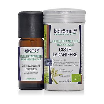 Organic Cistus Ladanifère essential oil 10 ml of essential oil
