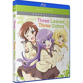 Three Leaves Three Colors: Complete Series [Blu-ray] USA import