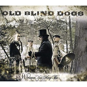 Old Blind Dogs - Wherever You May Be [CD] USA import