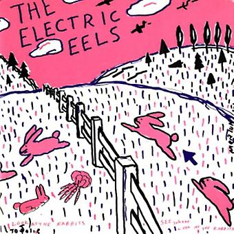 Electric Eels - Spin Age Blasters / Bunnies [Vinyl] USA import