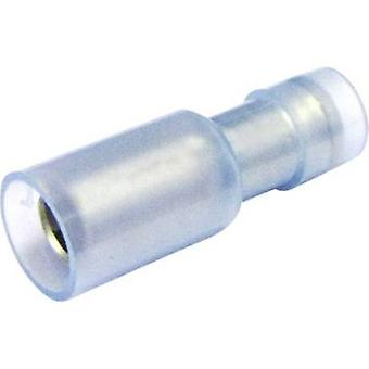 Bullet receptacle 1.50 mm² 2.50 mm² Pin diameter: 5 mm Insulated Blue Cimco 180312 1 pc(s)