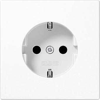 Jung Insert PG socket LS plus, LS design, LS 990 Alpine white LS1520WW