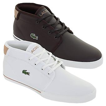 Lacoste Mens Ampthill 319 1 CMA Leather Trainers