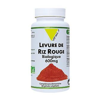 Röd risjäst 600mg standardiserat extrakt 60 vegetabiliska kapslar
