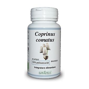 Coprinus Comatus Bio None