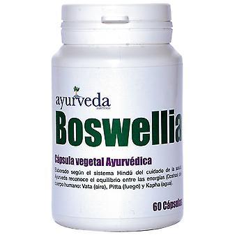 Ayurveda Boswelia 60 Capsules