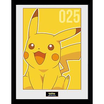 Pokemon Pikachu Mono keräilijä tulosta