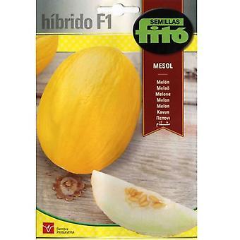Semillas Fitó Mesol hybrid melon (Garden , Gardening , Seeds)