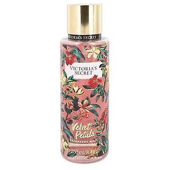 Victoria's Secret Velvet Petals By Victoria's Secret Fragrance Mist Spray 8.4 Oz (women) V728-547470