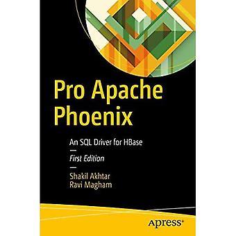 Pro Apache Phoenix: een SQL-stuurprogramma voor HBase