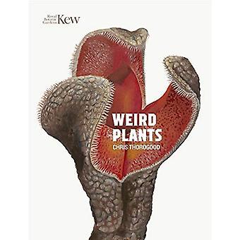 Weird Plants by Chris Thorogood - 9781842466629 Book