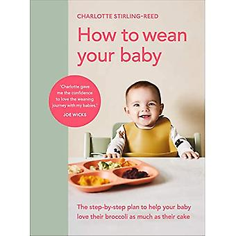 Como desmamar seu bebê: O plano passo a passo para ajudar seu bebê a amar seu brócolis tanto quanto seu bolo