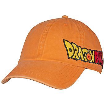 Dragon Ball Z Pigment Dye Embroidered Side Logo Adjustable Hat