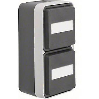 Berker Twin socket W.1 (surface-mounted) Grey, Light grey 47703535
