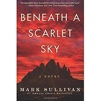 Unter einem scharlachroten Himmel: ein Roman