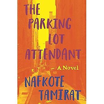 De parkeerplaats begeleider: Een roman