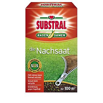 SUBSTRAL® The reseed lawn seeds, 2 kg