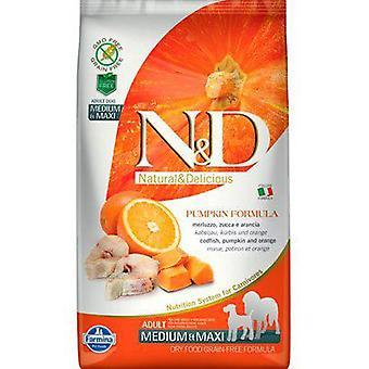 Farmina N&D Grain Free Pumpkin Adult Dog Medium & Maxi Codfish