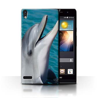 STUFF4 Case/Cover for Huawei Ascend P6/Dolphin/Marine Wildlife