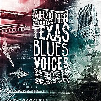 Fabrizio Poggi - Texas Blues Voices [CD] USA import