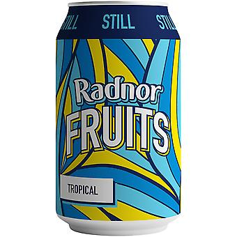 Radnor Fruits Still Tropical Cans