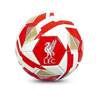 Liverpool Reflex Taglia 1 Mini Palla