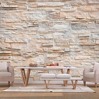 Artgeist Wallpaper Stony Gracefulness (Decoration , Wall murals , Wall murals standard)