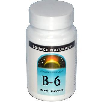 Source Naturals, B-6, 100 mg, 250 comprimés