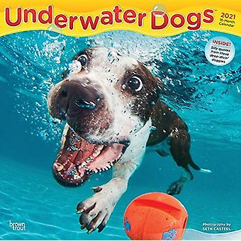 Underwater Dogs 2021 Square Calendar par Browntrout